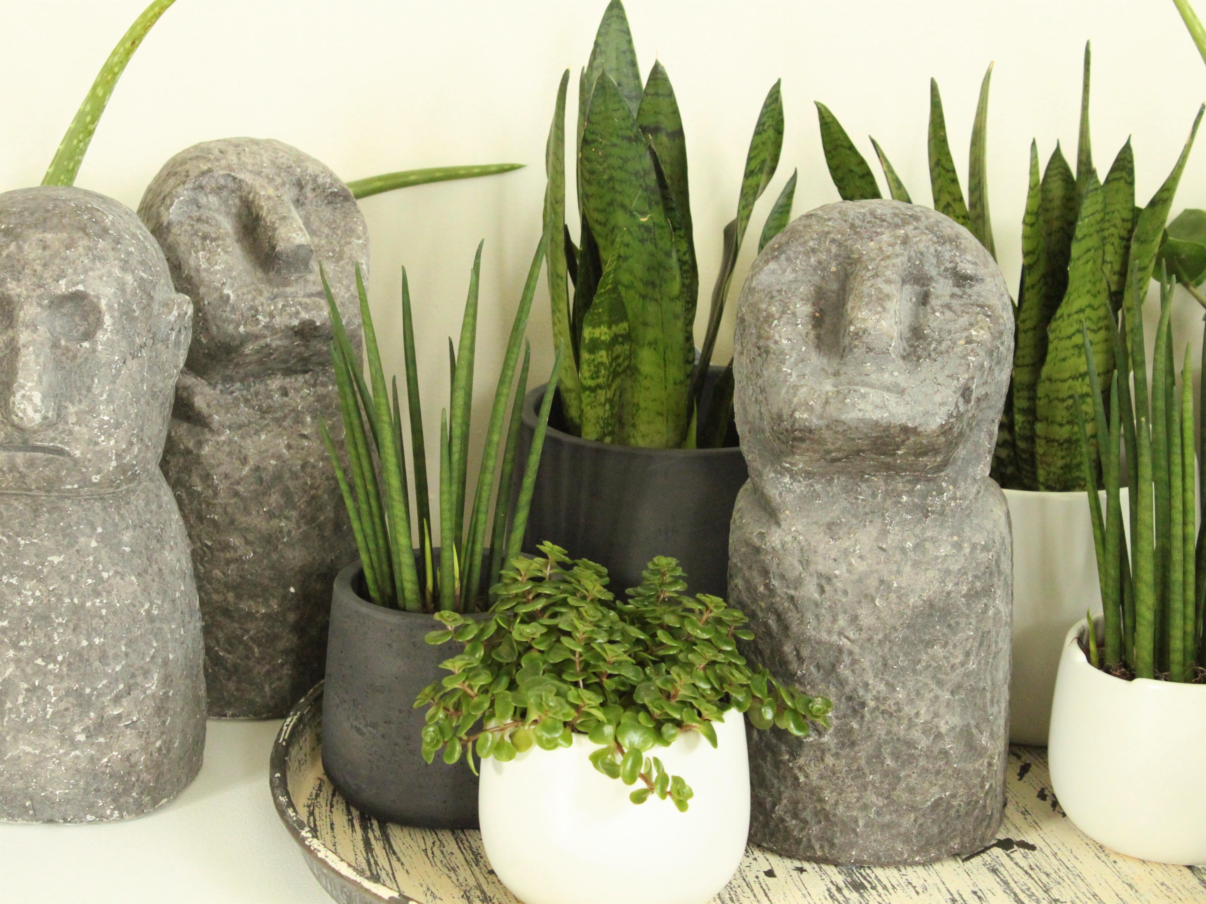 Decoratie greendelight home shoppen in een huiselijke sfeer